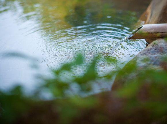 早雲隠れ里の湯