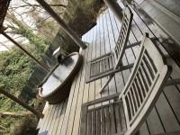 「箱根の温泉」(Hot spring in Hakone)