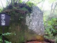 「大涌谷自然探勝歩道の大涌谷ー姥子間」(The Hiking Trail from Owakudani to Ubako)