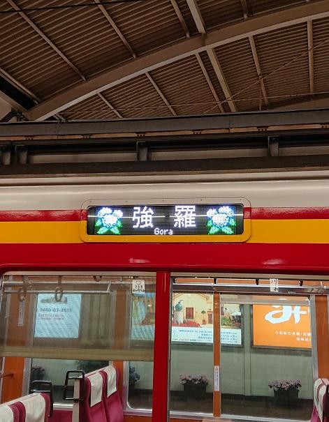 【あじさい電車(Hydrangea Train of Hakone Tozan Railway)】
