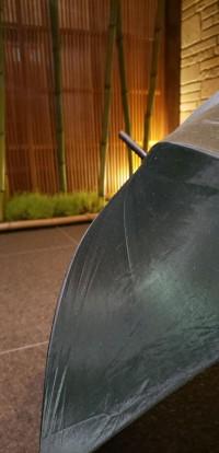 「梅雨」(The Rainy Season)